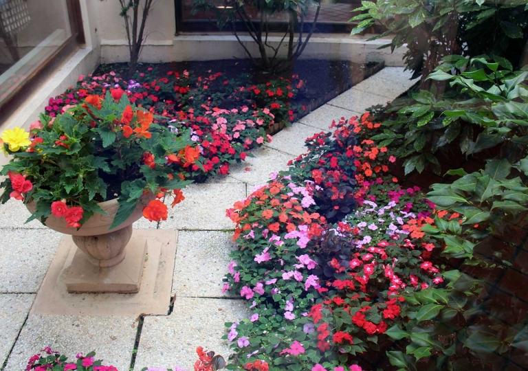 patio-leboisdore-img1